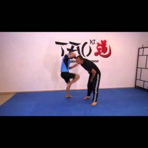 SELF DEFENSE LESSON (basic lesson) 3