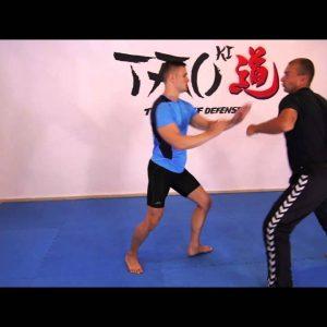 SELF DEFENSE LESSON (basic lesson) 4